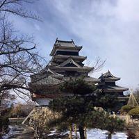 יום 8 - טירת העורב, והרי אלפים, ומשהו מפולחן היופי היפני