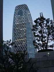 יום 10 - טוקיו