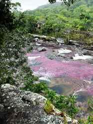 יום 6 - נהר הגבישים, הנהר הצלול, נהר הצבעים הפסיכדלים (אתם תחליטו בסוף מה השם...)
