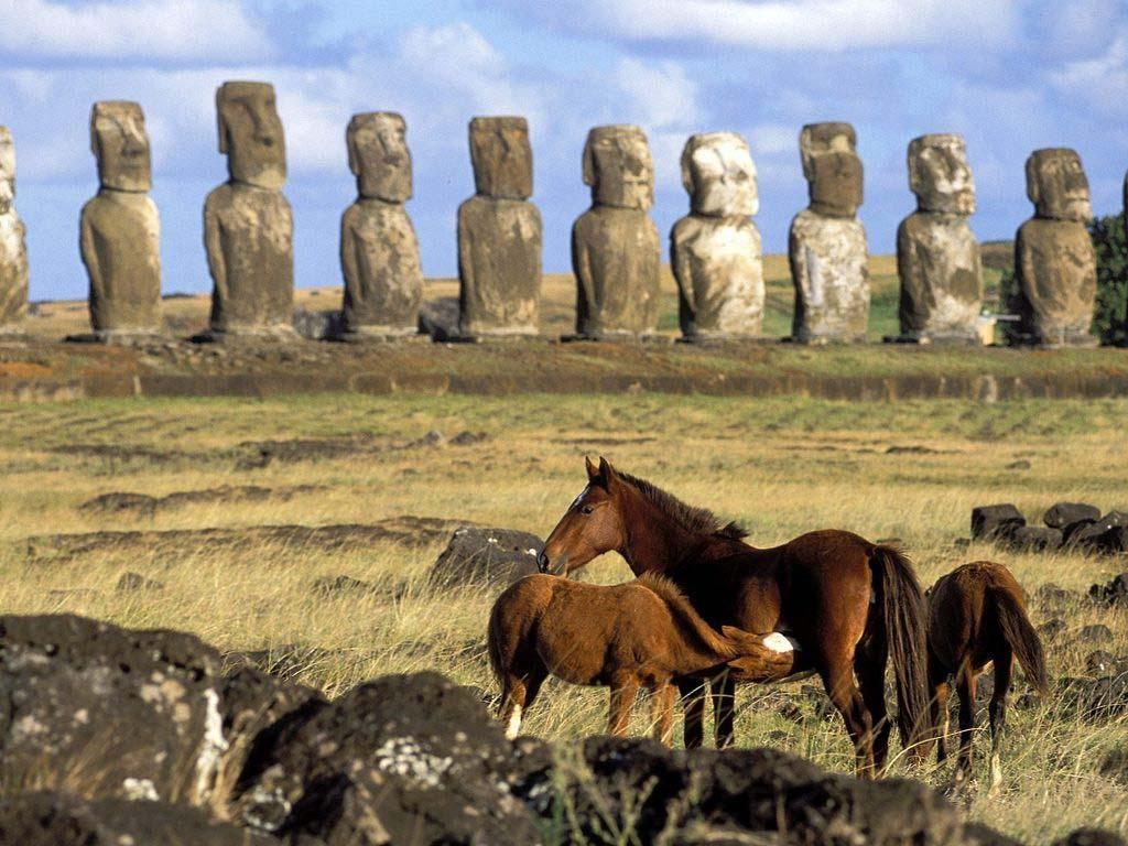 טיול לפרו ואי הפסחא - קונדורים, קרנבלים ופסלים ענקיים גם