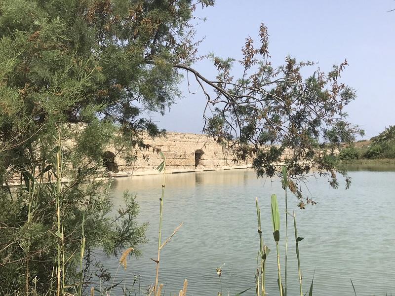 טיול במכוניות פרטיות למפעלי המים של קיסריה